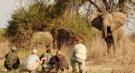 Natura Sudafricana | ExpoTur Viaggi
