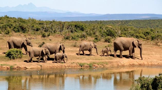 Sudafrica e Seychelles | ExpoTur Viaggi
