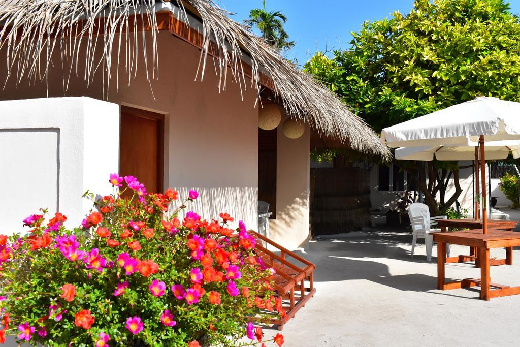 maldive guest house